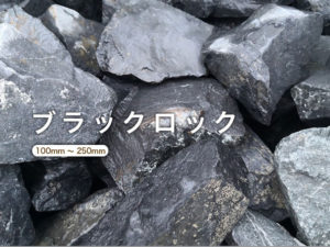ロックガーデン:ブラックロック